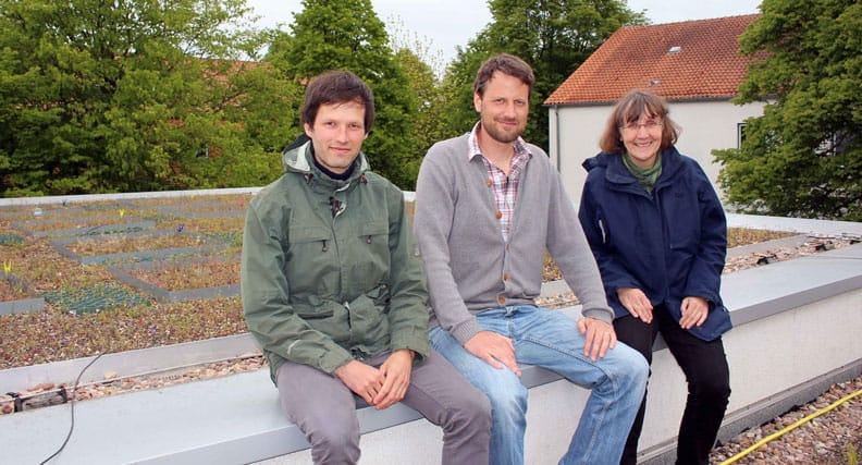 """Gemeinsam forschen sie seit Januar 2017 im Projekt """"RooBi – Roofs for Biodiversity"""" an der Hochschule Osnabrück: (von links) die wissenschaftlichen Mitarbeiter Daniel Jeschke und Dr. Roland Schröder sowie Prof. Dr. Kathrin Kiehl."""