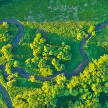 Flusslauf im Feld aus der Vogelperspektive