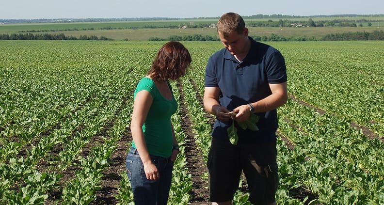 Wissenschaftlicher Nachwuchs für eine nachhaltige und zukunftsfähige Landwirtschaft in den Weiten Russlands und Kasachstans soll mit dem SAGRIS-Projekt gefördert werden.