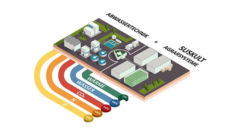 Schematische Darstellung einer kreislaufbasierten und urbanen Agrarproduktion mithilfe einer Kläranlage.