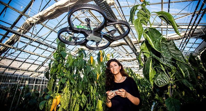 Maryam Fadami stellt gemeinsam mit dem Projektleiter, Prof. Dr. Thomas Rath, eines der sechs Forschungsprojekte der Hochschule Osnabrück auf der diesjährigen Agritechnica in Hannover vor. Ihr Ziel ist es, einen selbstfliegenden Copter für Gewächshäuser zu entwickeln. Copter, die bislang manuell gesteuert werden, sollen in Zukunft Klimaregelung in Gewächshäusern verbessern.