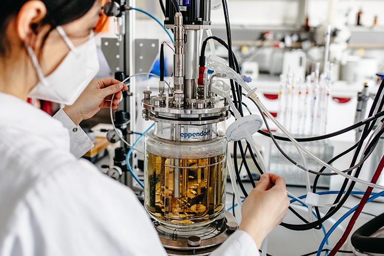 Wissenschaftler*innen der Hochschule Niederrhein arbeiten daran, Lebensmittelreststoffe nachhaltig zu nutzen.